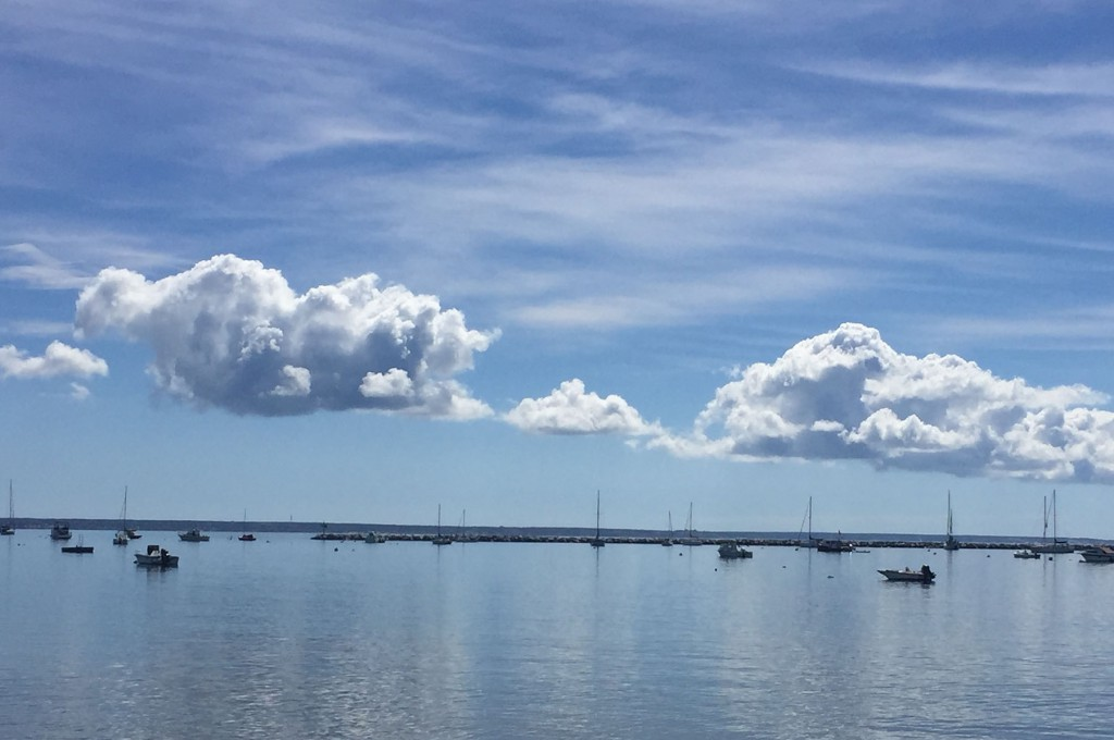 View of Provincetown harbor