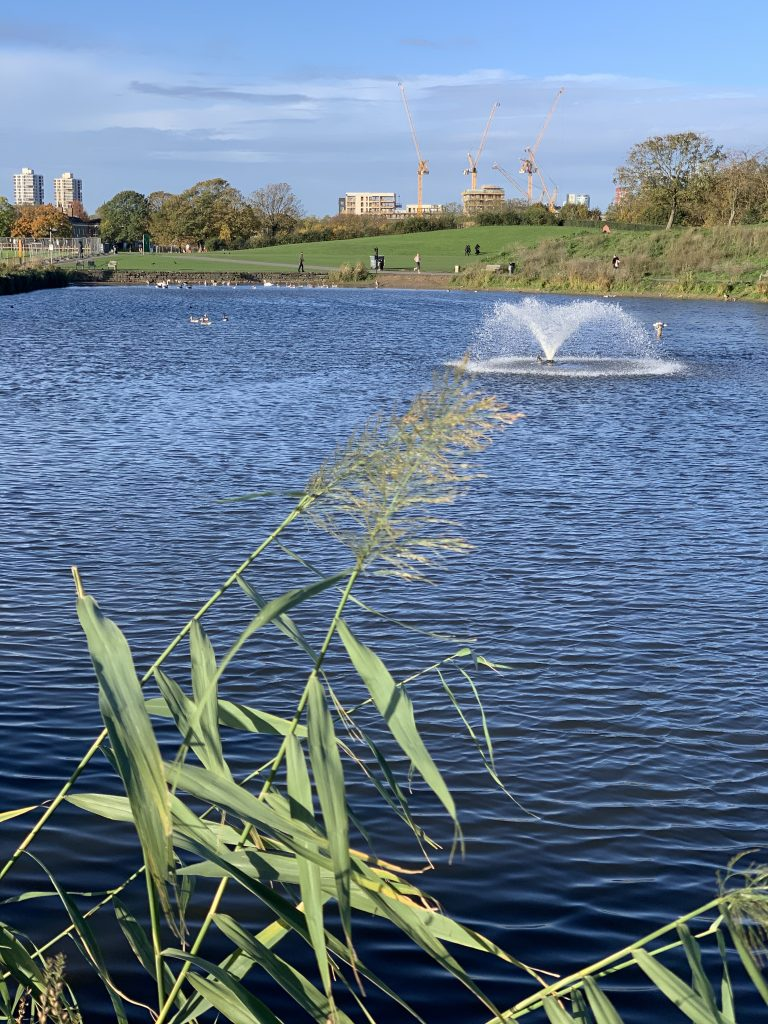 View of lake and fountain in Burgess Park
