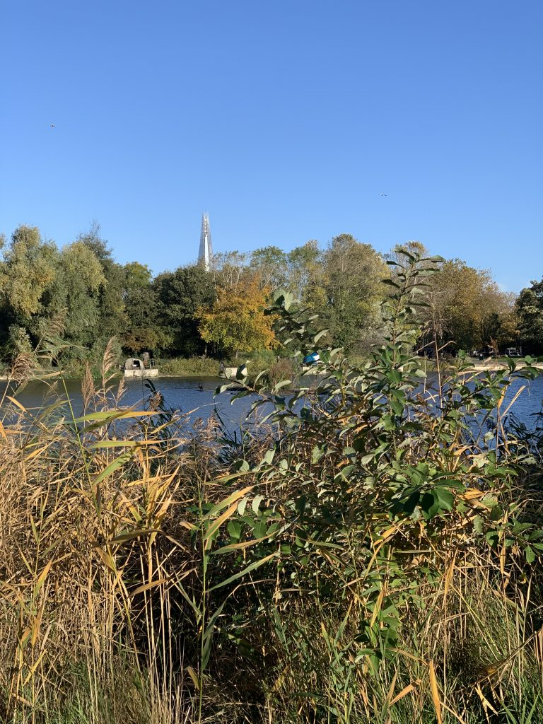 Burgess Park with Shard in the distance